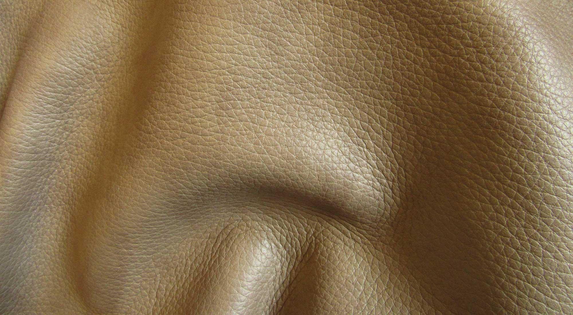 Softy | Marco Bettega Srl